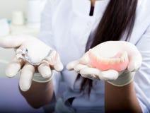 Belle protesi dentarie asiatiche della tenuta del dentista della giovane donna Immagini Stock