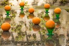 Belle réflexion fraîche de huit oranges Image libre de droits