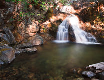 Belle région sauvage de Shasta de bâti Images stock