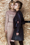 Belle ragazze alla moda in un vestito alla moda fotografie stock