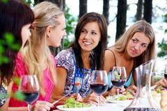 Belle ragazze che bevono vino fotografia stock