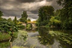 Belle rivière anglaise Avon de campagne images stock