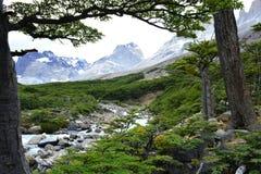 Belle rivière au parc national de Torres del Paine, Chili image stock