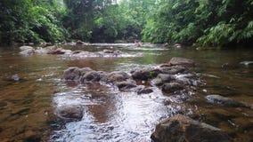 Belle rivière au Sri Lanka images stock