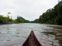 Belle rivière de Decending dans la forêt d'Amazone dans un canoë de pirogue photos stock