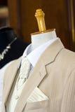 Belle robe de mariages mâle Images libres de droits