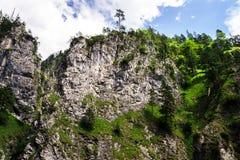 Belle rocce in alpi Immagine Stock Libera da Diritti