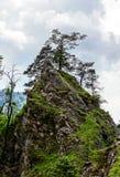Belle rocce in alpi Immagini Stock Libere da Diritti