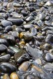 Belle rocce sulla spiaggia Fotografia Stock Libera da Diritti