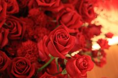 Belle rose de rouge dans le bouquet de fleur Photos libres de droits