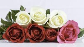 Belle rose del mazzo Immagini Stock