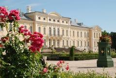 Belle rose e bei barrocco e Rococo Fotografie Stock Libere da Diritti