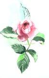 Belle Rose Garden Photos libres de droits
