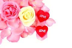 Belle rose rose et blanche et coeur rouge de l'amour sur le fond blanc. Photo libre de droits