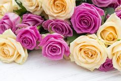 Belle rose su un fondo di legno bianco Fotografia Stock