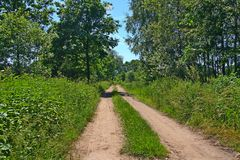 Belle route à la frontière polonaise, Pologne Photographie stock