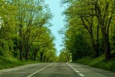 Belle route étonnante au printemps Photos libres de droits