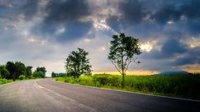 Belle route autour de lumière du soleil verte de Beutifull de champ Image stock