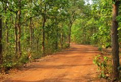 Belle route dans la for?t dans le birbhum photographie stock
