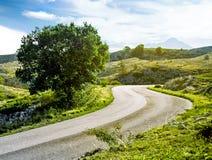 Belle route de montagne d'été Images libres de droits