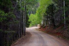 Belle route de montagne de saleté d'enroulement par la forêt de pin et de tremble images libres de droits