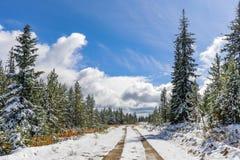 Belle route de notation canadienne en hiver photographie stock