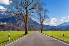 Belle route rurale avec des arbres, herbe colorée en montagnes Image libre de droits