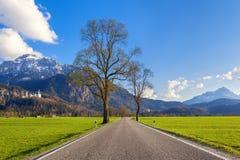 Belle route rurale avec des arbres, herbe colorée en montagnes Image stock