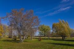 Belle saison de terrain de golf en automne Image libre de droits