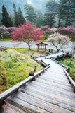 Belle Sakura Garden dans Wuling F photographie stock libre de droits