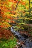 Belle scène d'automne Photographie stock libre de droits