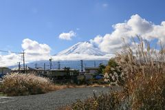 Belle scène de montagne de Fuji avec l'herbe Image stock
