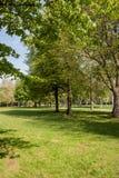 Belle scène de parc Photo libre de droits