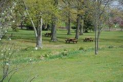Belle scène de parc Images libres de droits