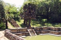 Belle scala nello stagno di acqua in tempio antico di hinduist Fotografia Stock Libera da Diritti