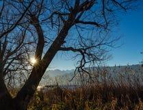Belle scene sulle rive del lago superiore Obersee zurich vicino a Hurden Svitto e a Rapperswil-Jona Sankt Gallen, immagine stock libera da diritti