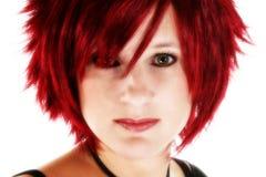 Belle tête rouge photo libre de droits