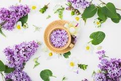 Belle tasse avec les fleurs lilas sur un fond blanc Photographie stock libre de droits