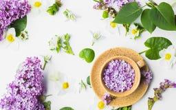 Belle tasse avec les fleurs lilas sur un fond blanc Image libre de droits
