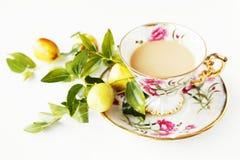 Belle tazza e frutta Fotografia Stock Libera da Diritti