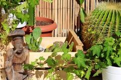 Belle terrasse de relaxation complètement des plantes et des cactus avec une statuette en bois photos stock
