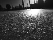 Belle texture d'enneigement au soleil photographie stock
