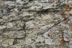 Belle texture d'une pierre de montagne Photos libres de droits