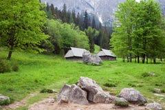 belle vallée de tatra de montagnes photographie stock