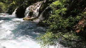 Belle vidéo de rivière clips vidéos