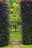 Belle vieille porte de jardin avec des haies image stock