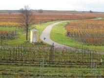Belle vigne in Lutzmannsburg con le vie immagini stock