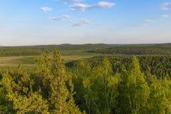 Belle viste della foresta sul cielo blu del fondo Immagini Stock Libere da Diritti