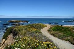 Belle viste di oceano lungo la costa del Pacifico, CA, U.S.A. Fotografia Stock