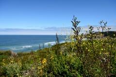Belle viste di oceano lungo la costa del Pacifico, CA, U.S.A. Fotografia Stock Libera da Diritti